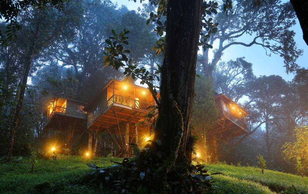 Nature Zone Jungle Resort Munnar India Booking Com