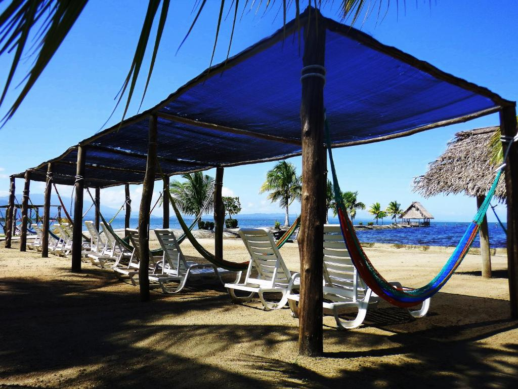 hammocks your or get aventura yucatan usa ethical colombian hammock guatemalan chairs