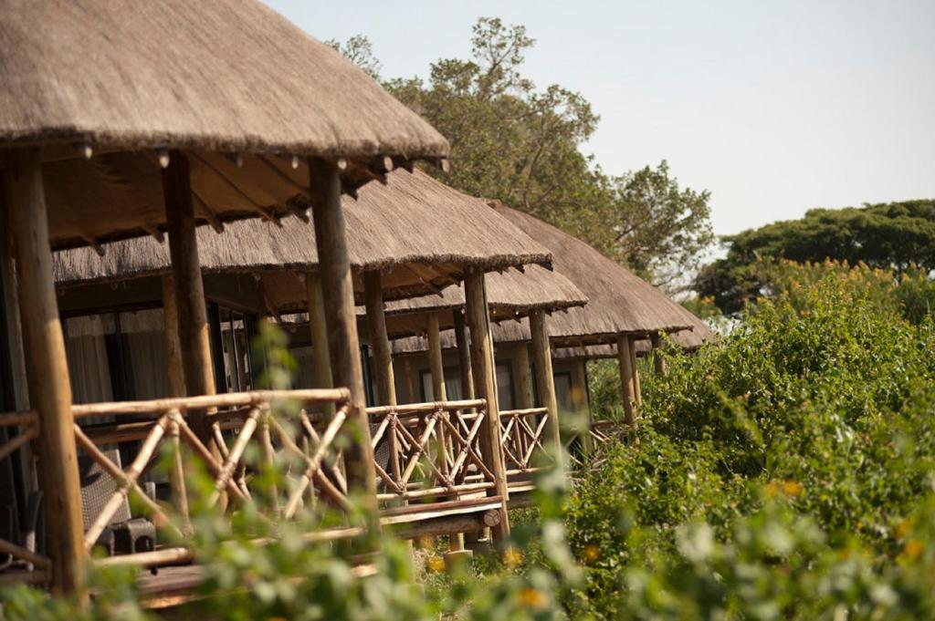 Jambo Impala Eco-Lodge