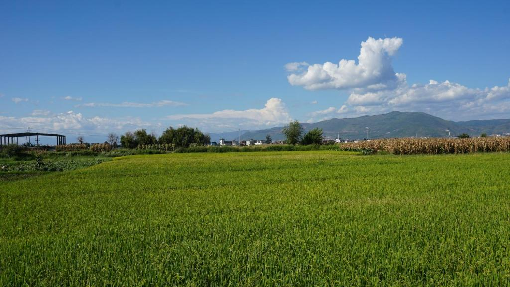 Natural landscape near the hostel