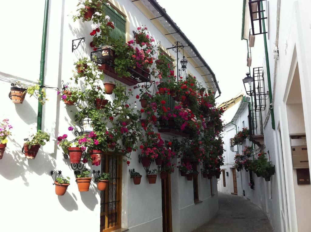 hotels with  charm in andalucía  122