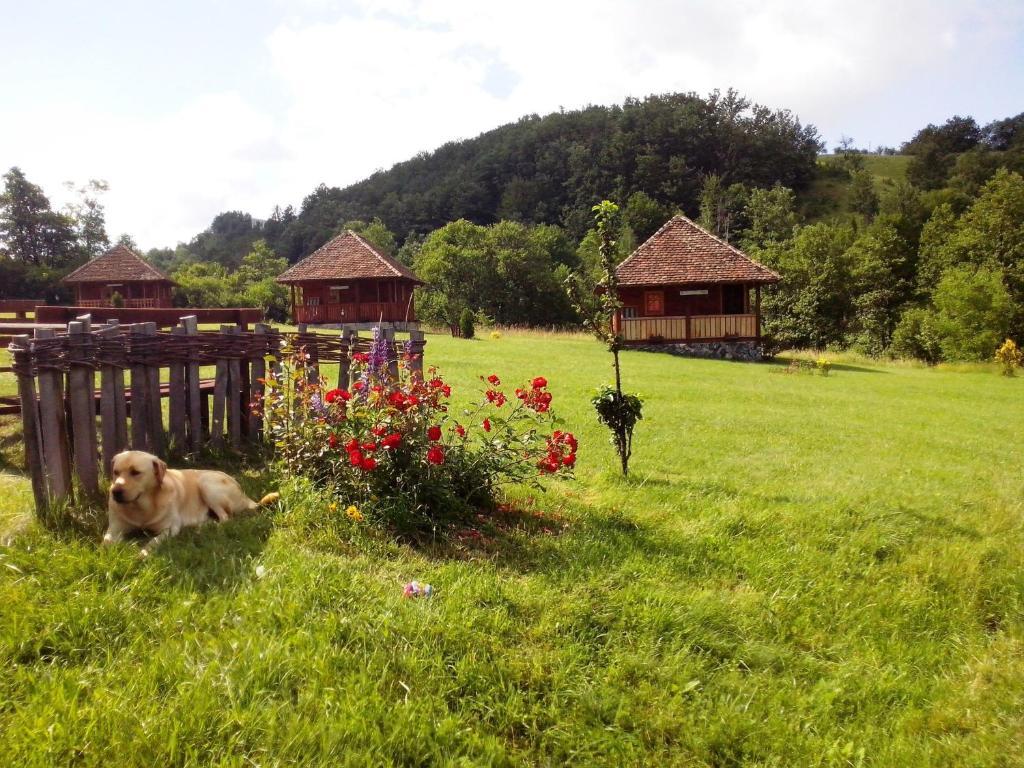 Garden Design Kosjeric etno village gostoljublje, kosjerić, serbia - booking