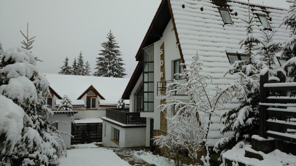 Vila Sorina зимой