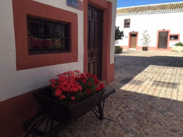 boutique hotels ciudad real provinz  106