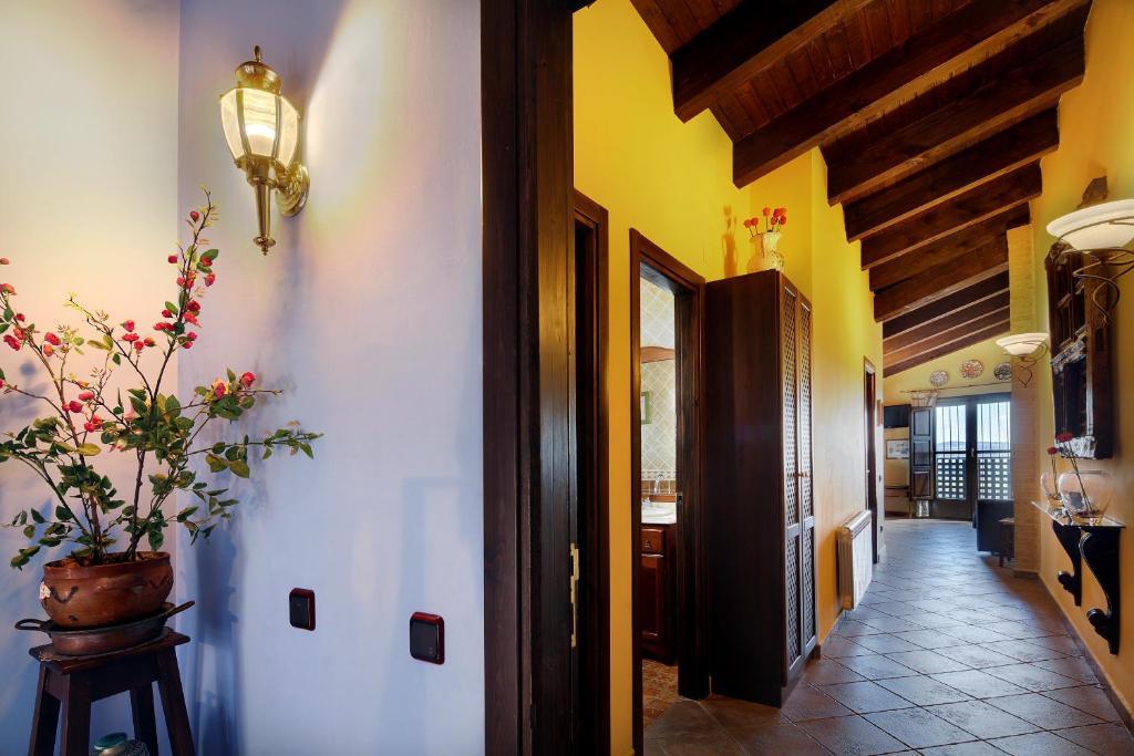 Imagen del Apartamentos Teresana