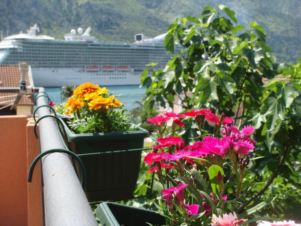 Apartments Martiva, Kotor, Montenegro - Booking com