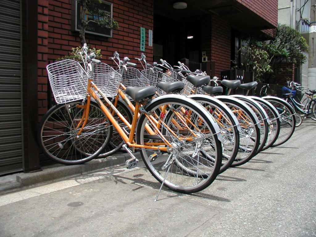 Biking at or in the surroundings of Hotel New Koyo