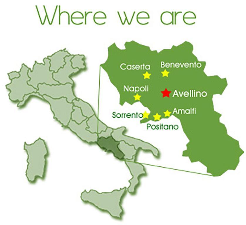 Villa Palmira Quadrelle Italy Bookingcom