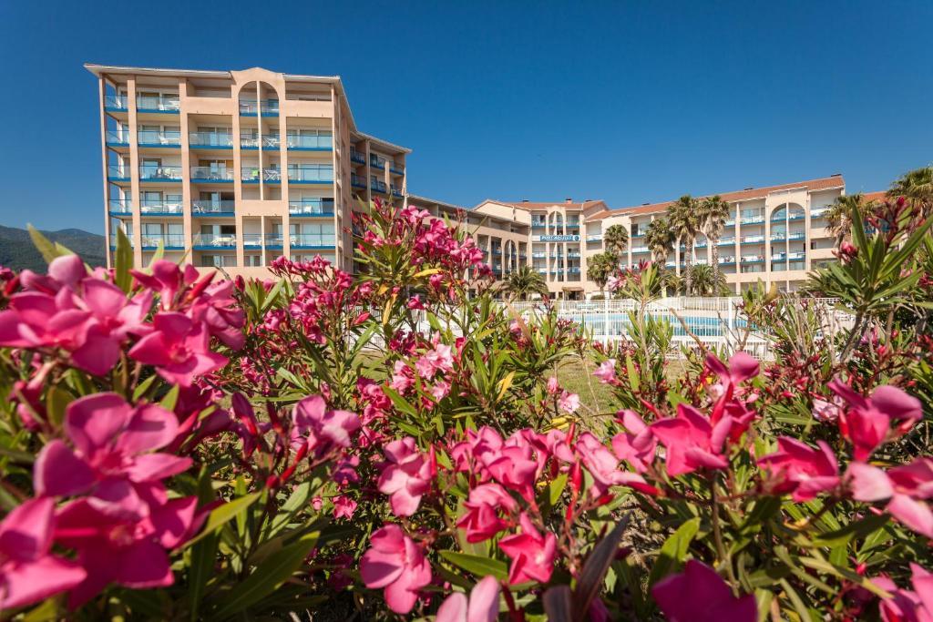Résidence Port Argelès ArgelèssurMer France Bookingcom - Residence port argeles