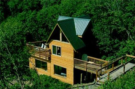 rentals bear cabin cabins bears vacation htm cordova cear den in alaska brown