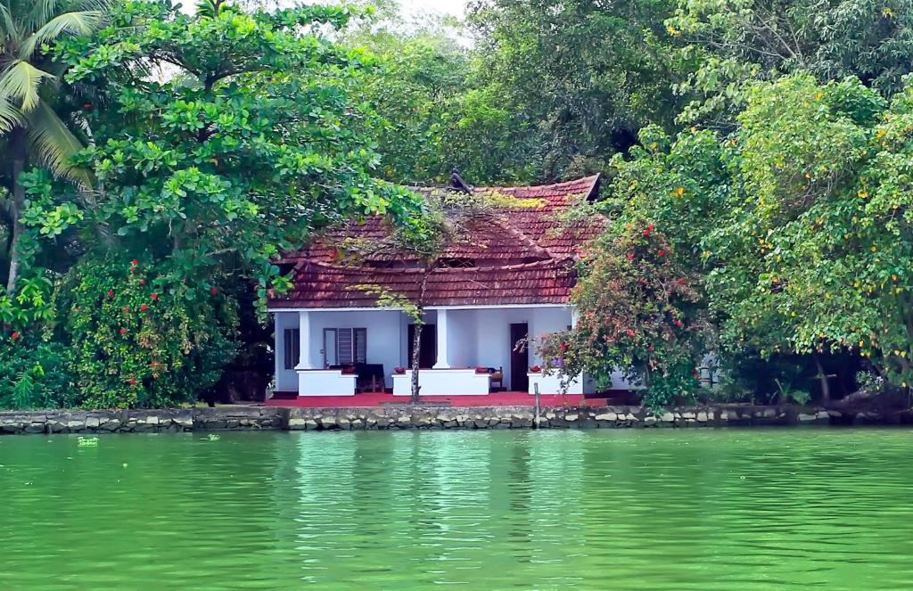 Here are some of the best Kerala backwaters: