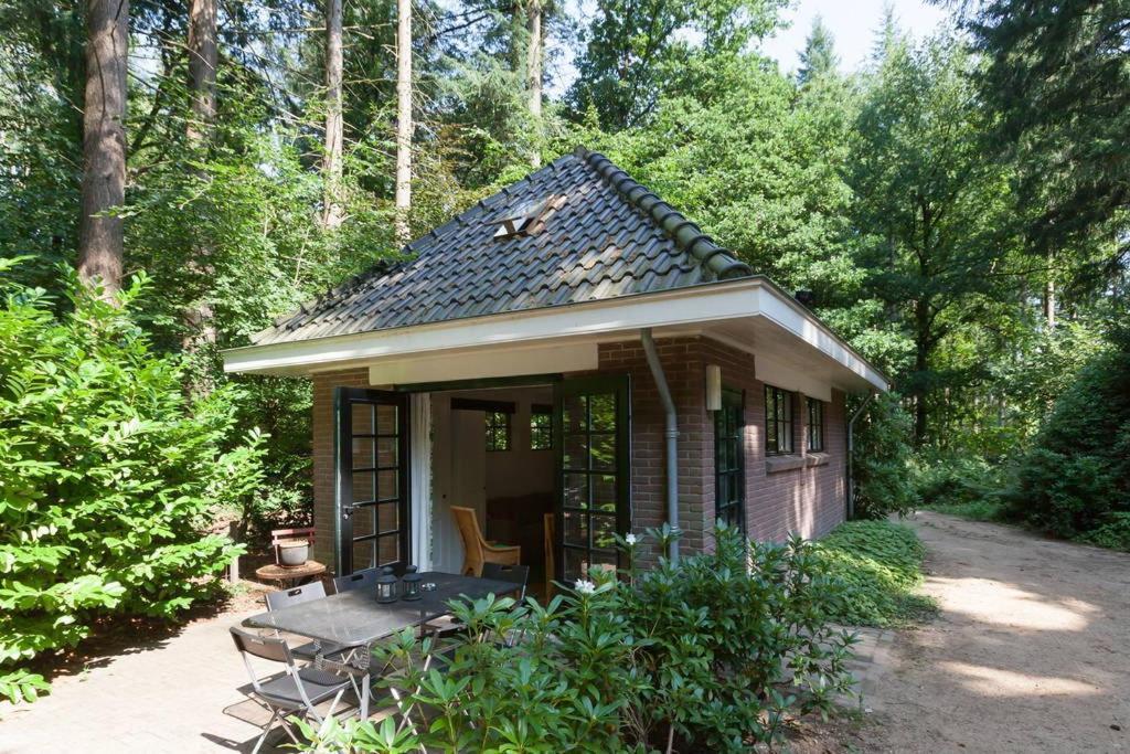 vakantiehuis bos huisje nederland putten