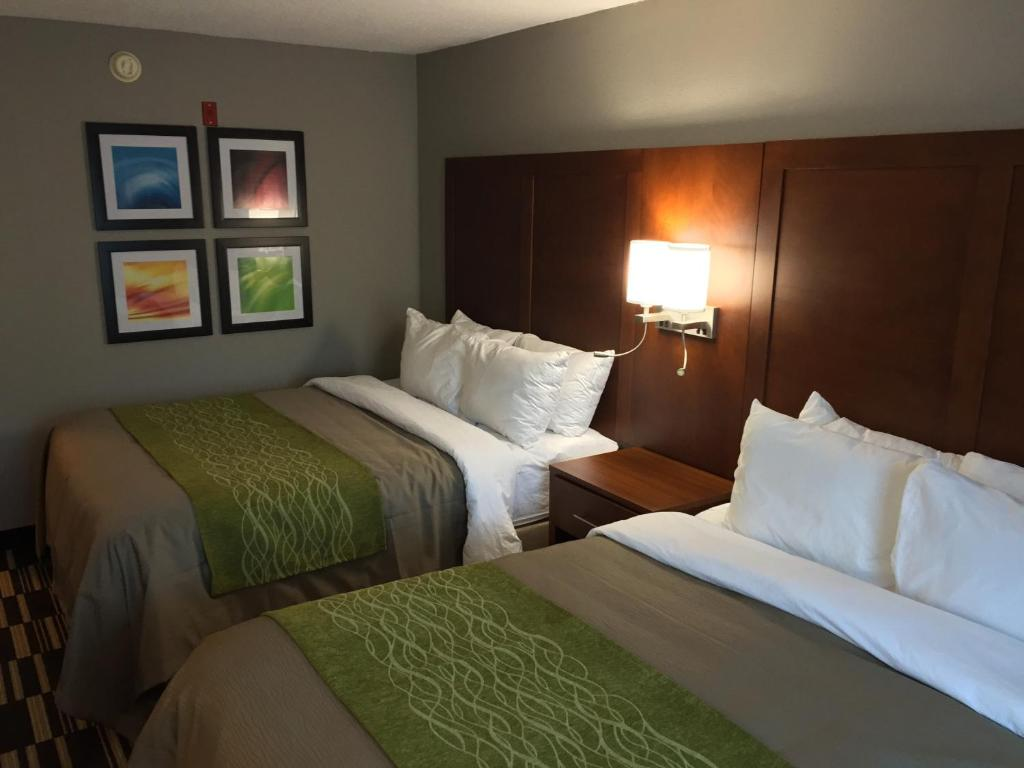 quality inn and suites ashland va booking com