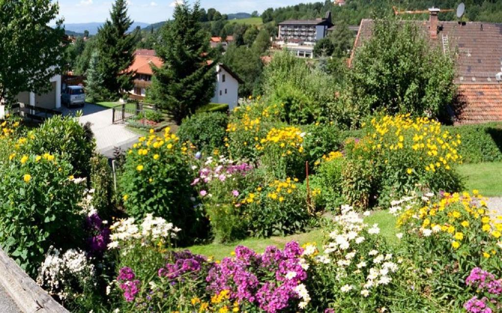 Bilder Blumengarten apartment ferienwohnung am blumengarten bodenmais germany