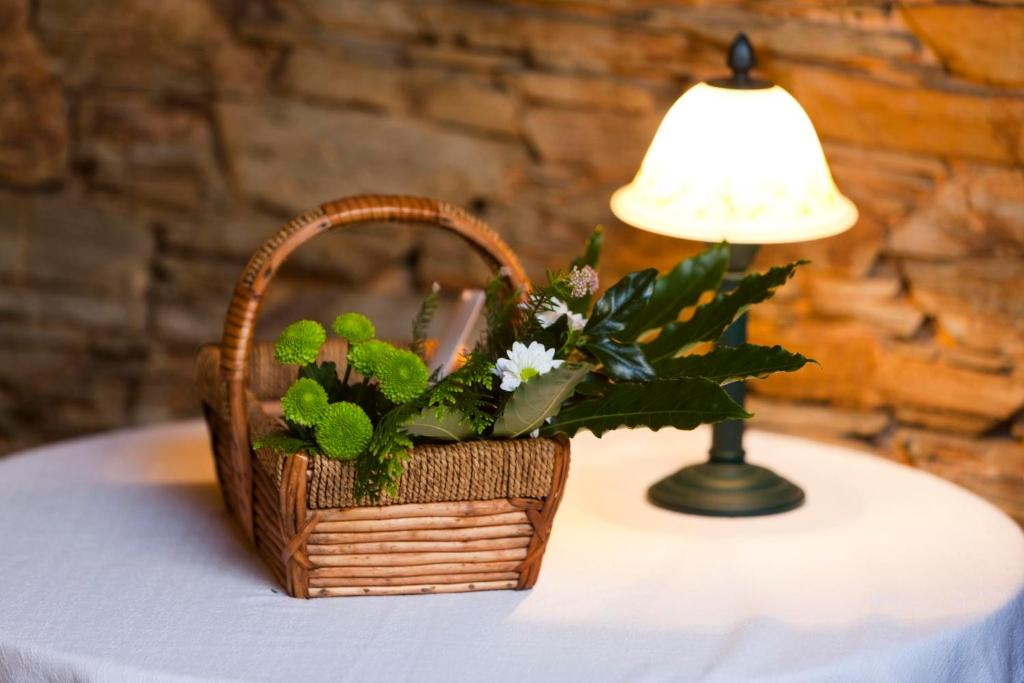 boutique hotels in lugo  147