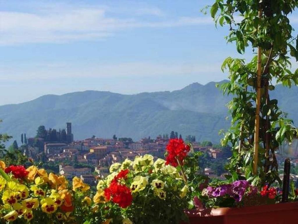 Nearby hotel : Il Trebbio