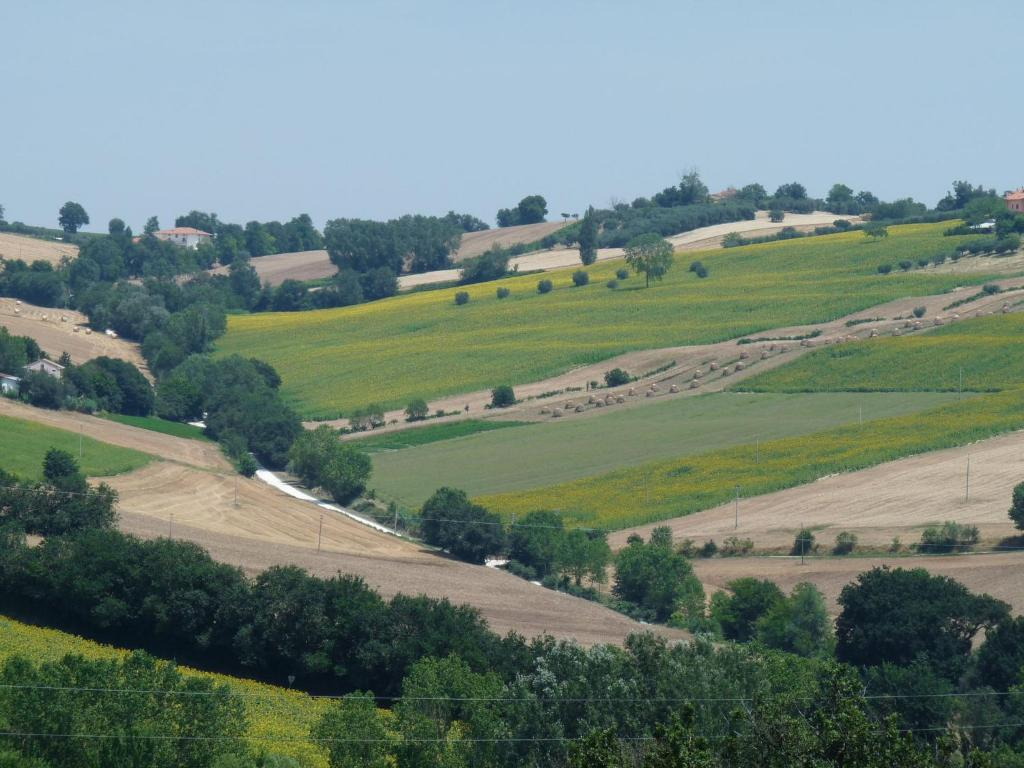 Nearby hotel : Holiday Home Colline Di Bartolo Corinaldo