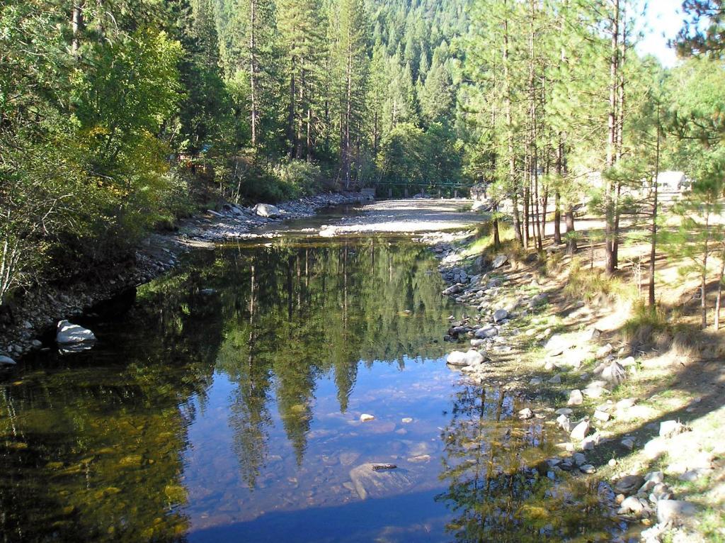 Yosemite Lakes Cottage 50