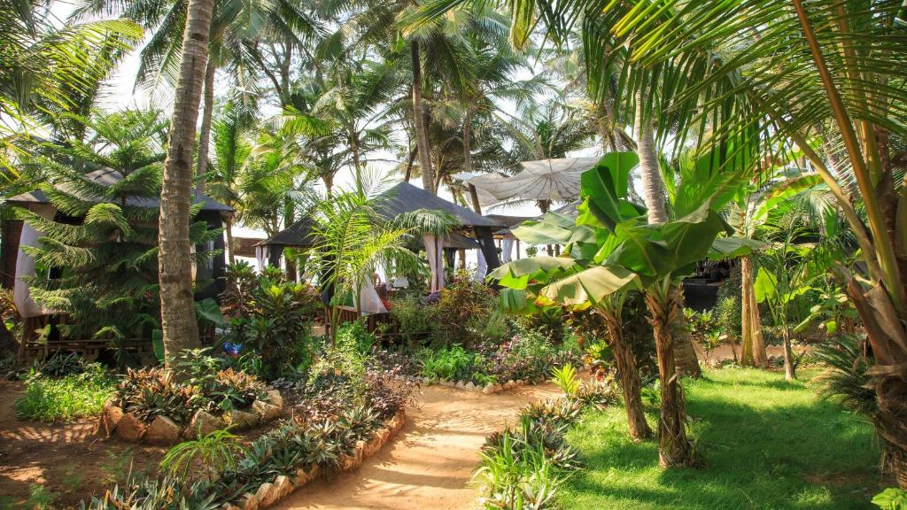 A garden outside Simrose
