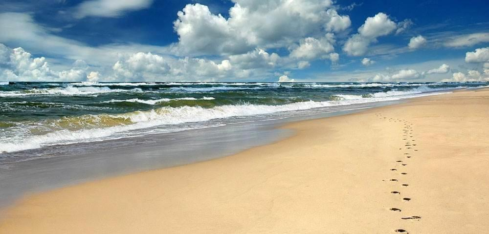 Gallery Image Of This Property Traveler Photo Daytona Beach