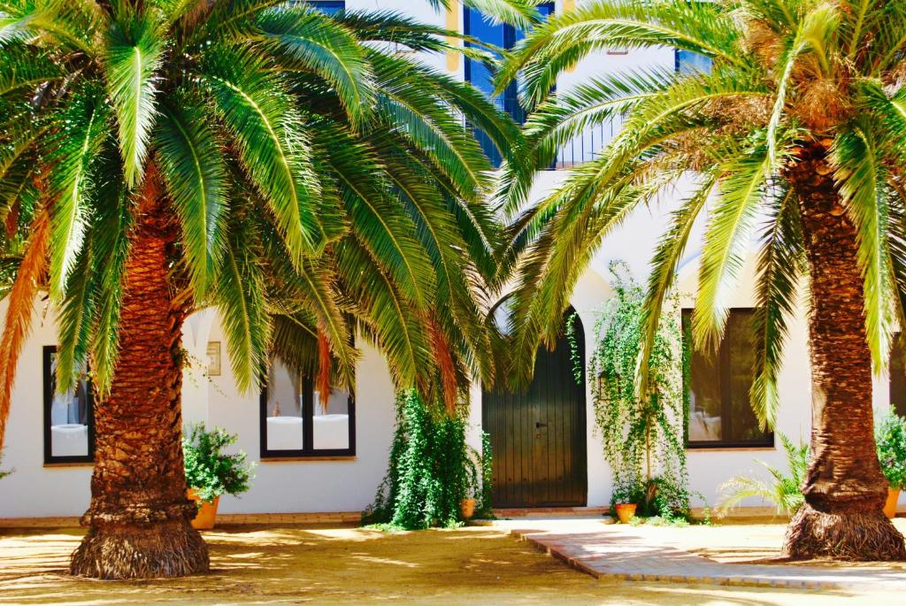 boutique hotels in badajoz  44