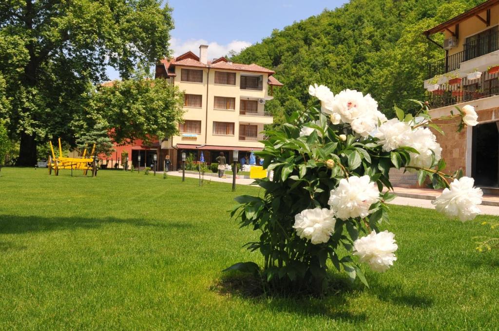Хотел Делта - Огняново