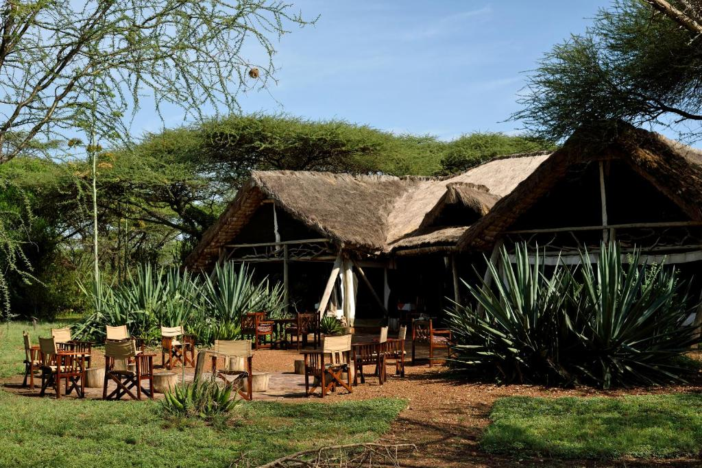 Gallery image of this property & Ikoma Tented Camp Robanda u2013 Updated 2018 Prices