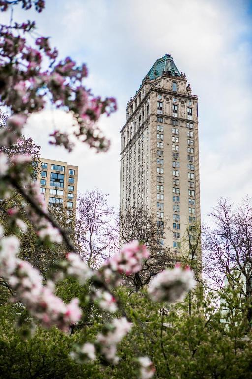 Risultati immagini per st. pierre hotel in new york city