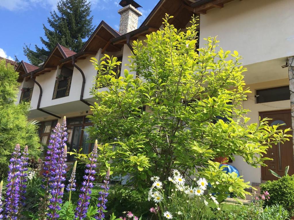 Къща за гости Елизабет - Самоков