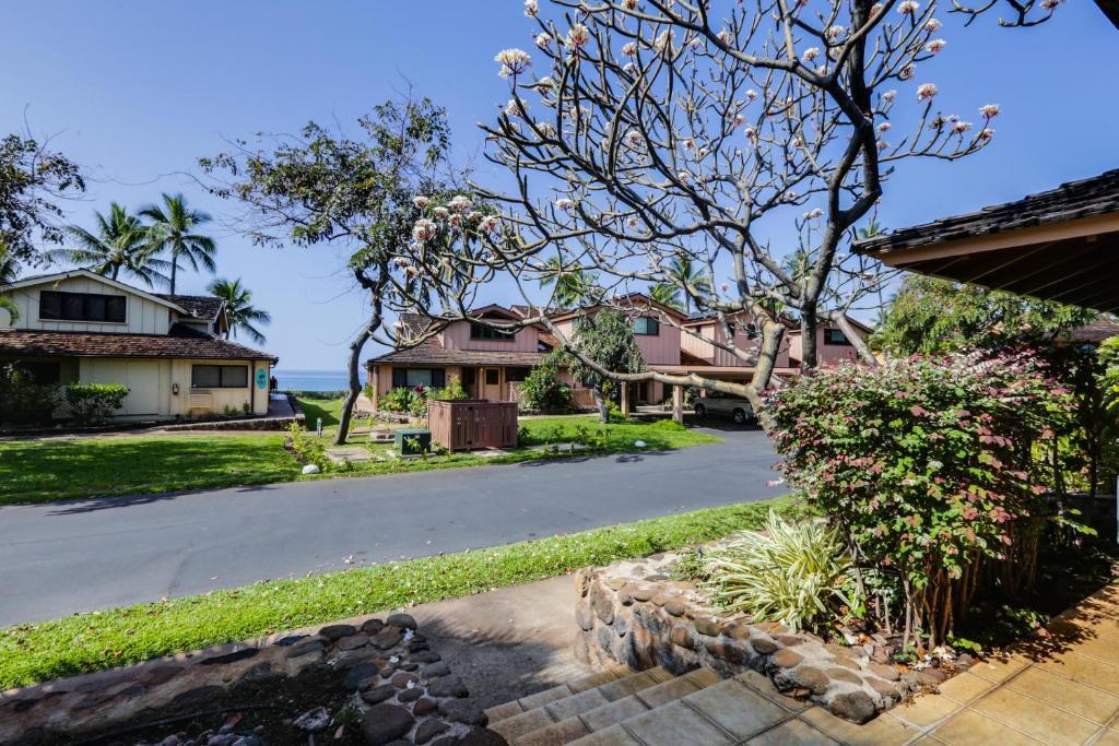 Apartments In Launiupoko Maui