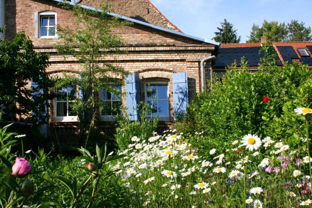 The Little English Cottage (Deutschland Rollsdorf