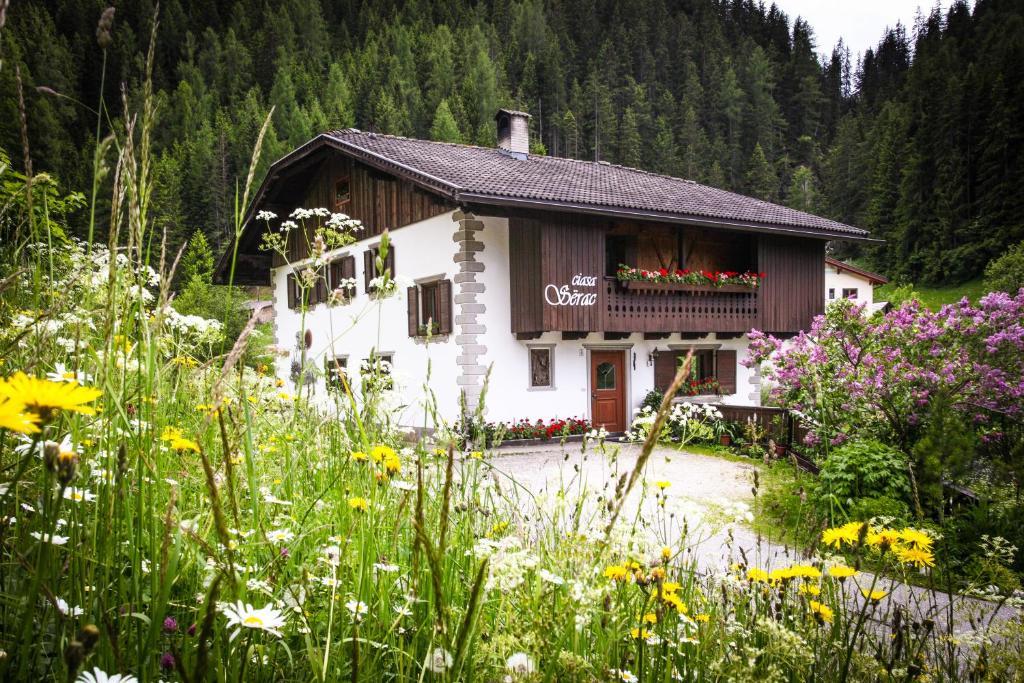 Apartments In Antermoia Trentino Alto Adige