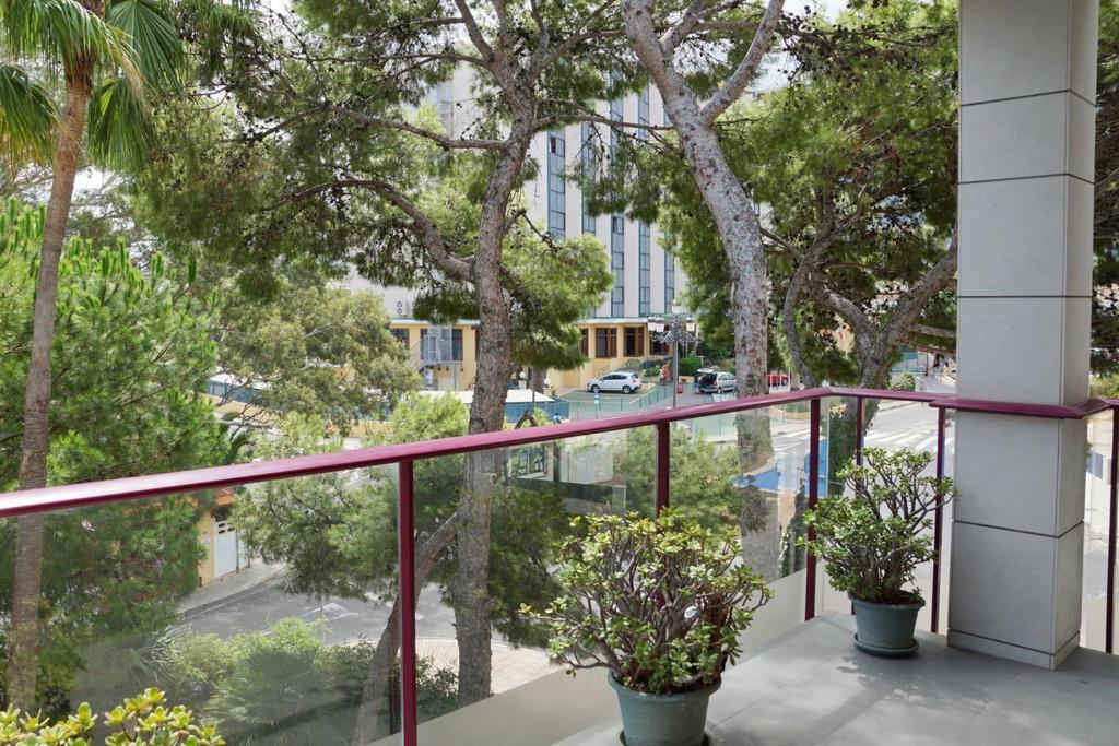 Imagen del Apartamento frente club nautico La Marina