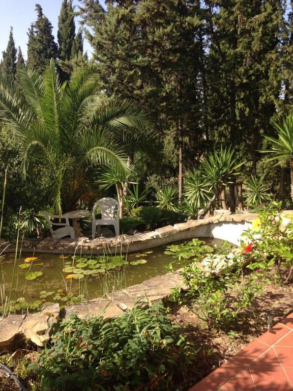 Foto del Garden Apt Alhaurín el Grande