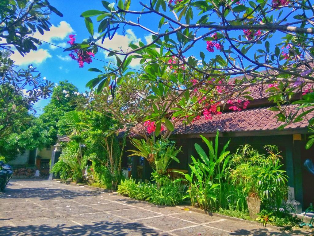 A garden outside Hotel Kubuku