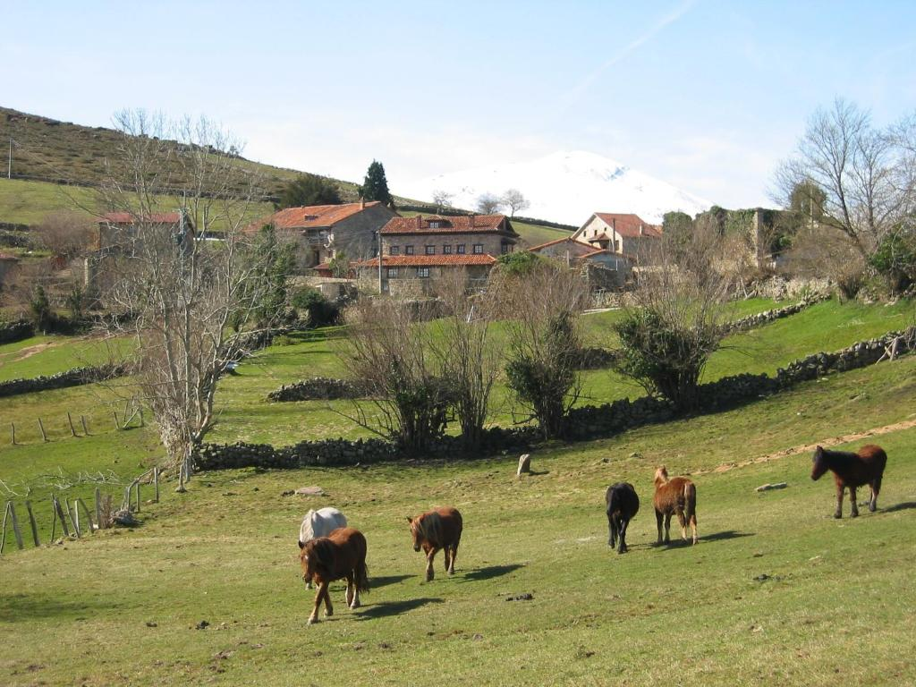 Apartments In Ormas Cantabria