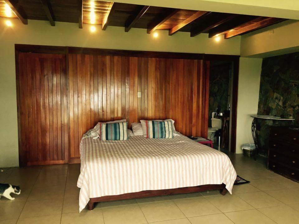 Villa Bromelia Oceanview Rainforest
