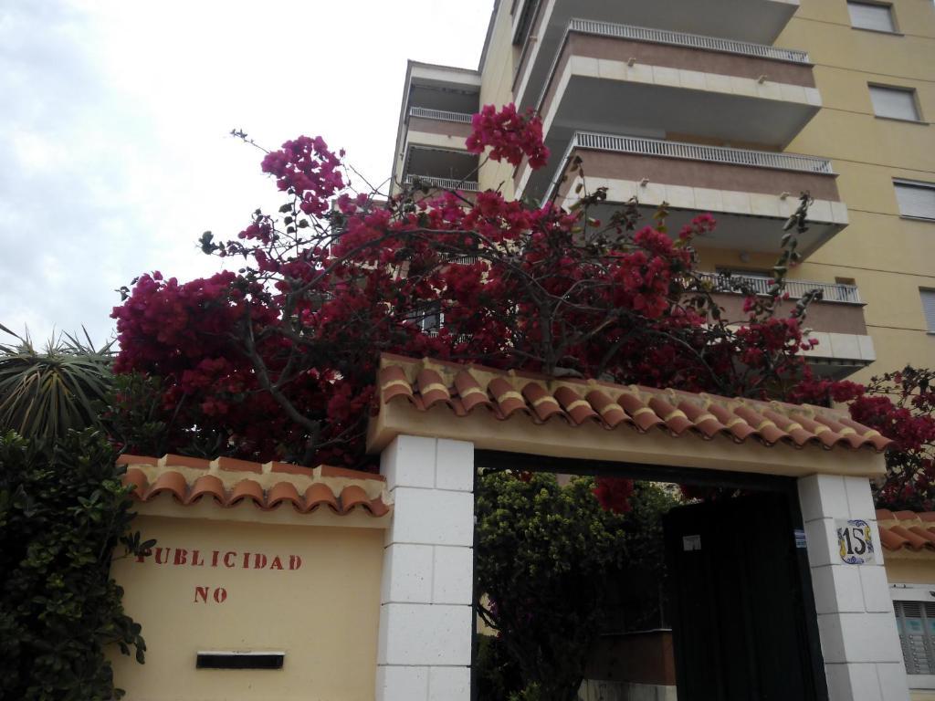 Imagen del Gandia Playa Apartamento
