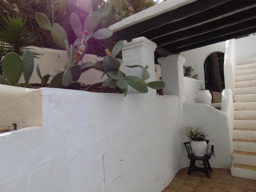 Imagen del Apartamentos Miramar II