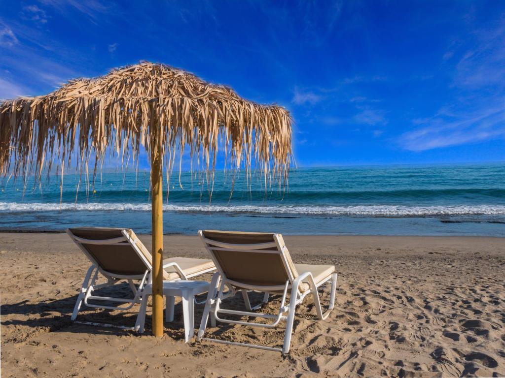 80618683 - Alexia Beach Hotel
