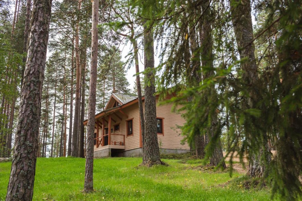 Туры и активный отдых в Карелии