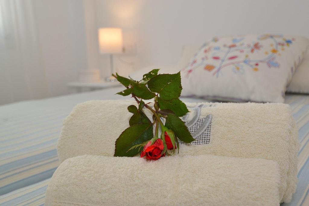 129 Can Picafort Apartment Mallorca