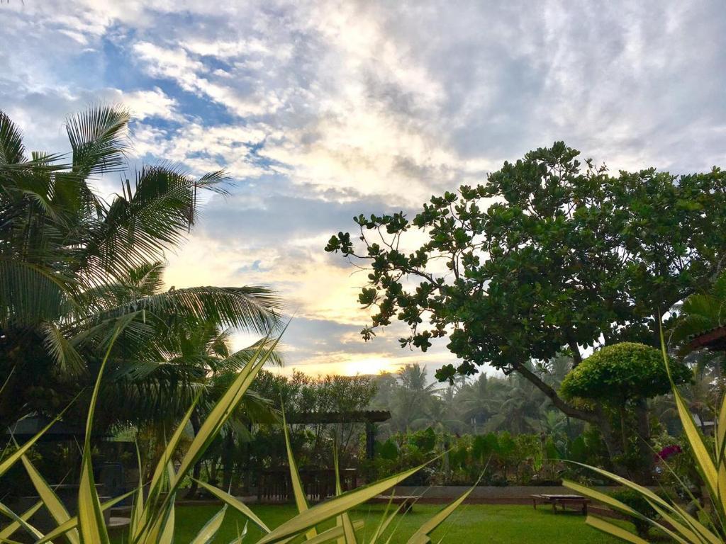 Sanford Guest House (Sri Lanka Ahangama) - Booking.com