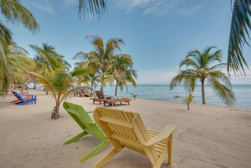 5 Best Places to Stay in Placencia: Unique Hotels ...  |Belize Treehouse Accommodation Near Beach