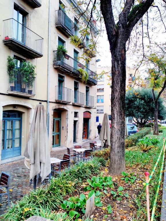Galligants Girona foto