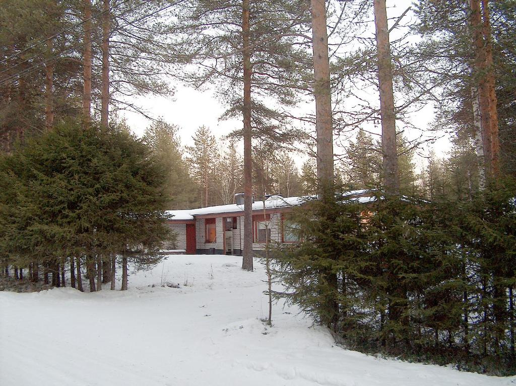 Cabin-Style Apartment