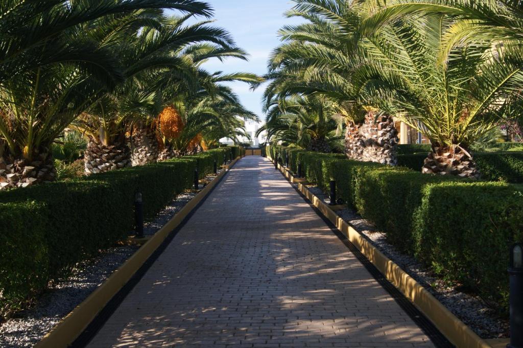 Imagen del Alcocebre Beach Resort