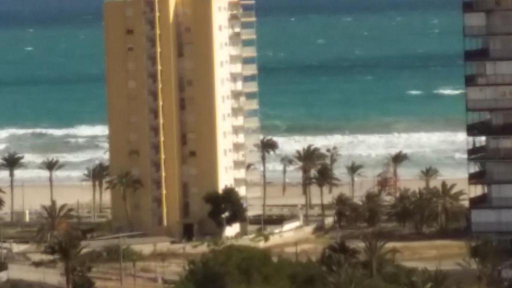 playa muchavista edificio jordi
