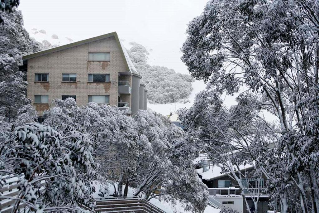 Alpine View Apartments during the winter