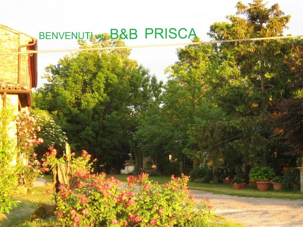 B&B Prisca